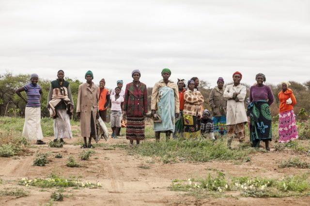 Al progetto hanno preso parte 207 tra contadini e contadine: un alto grado di coinvolgimento della comunità, che ha vissuto la sfida del cambiamento con spirito attivo e propositivo. Foto di Roger Lo Guarro.