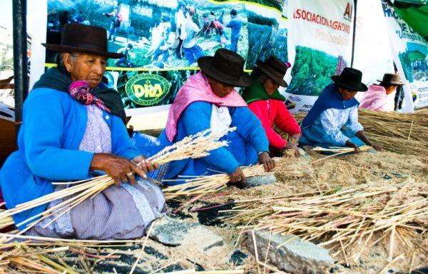 Produttrici di quinoa nella zona andina di Ayacucho, Perù.