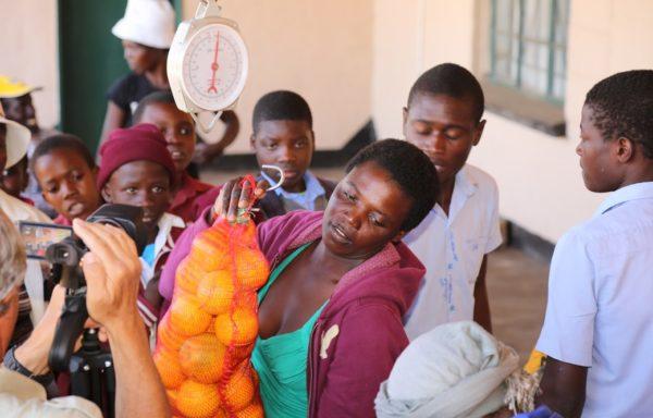 Il progetto ha permesso il passaggio a un'agricoltura di mercato: la comunità ha infatti avviato un accordo commerciale con il distretto locale di BBJ, impresa produttrice di succhi concentrati.