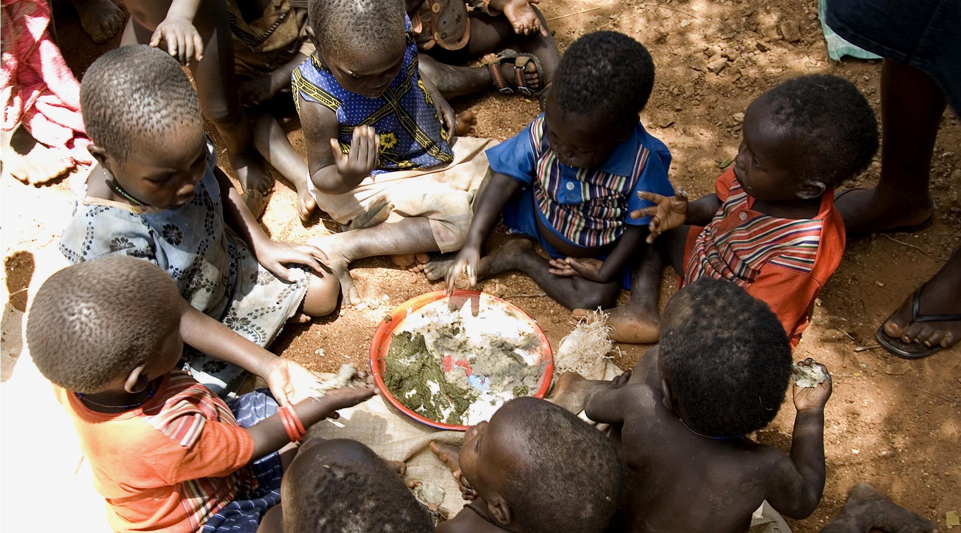 La Giornata Mondiale dell'Alimentazione (16 ottobre) si celebra in tutto il mondo per ricordare la data di fondazione della FAO, l'Organizzazione delle Nazioni Unite per l'alimentazione e l'agricoltura.