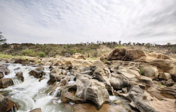Veduta del Parco del Grande Limpopo, in Sudafrica. Foto di Andrea Frazzetta