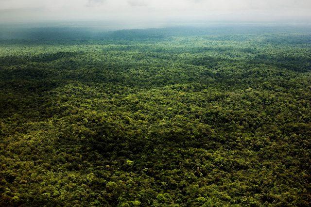 Amazzonia foresta perù ph. Fabio Cuttica
