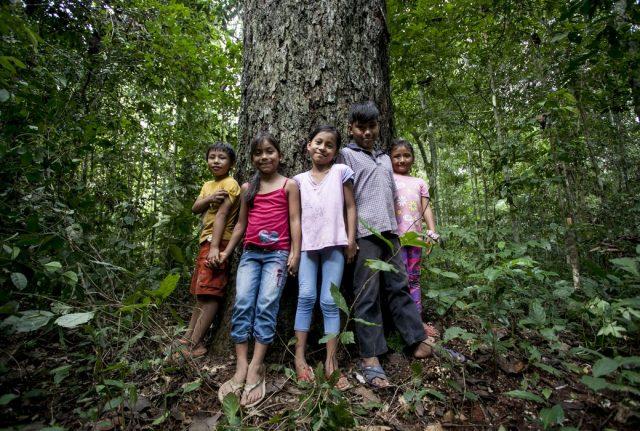 Bambini circondano un albero di castaña. Foto di Roger Lo Guarro.