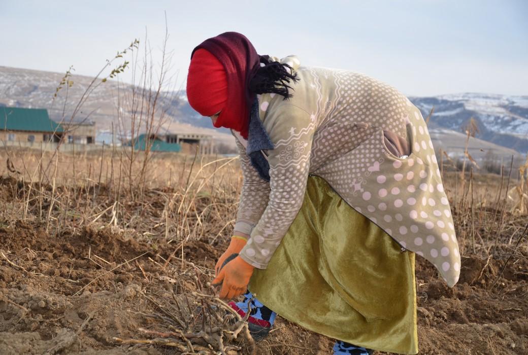 Tajikistan, Cesvi 2018.