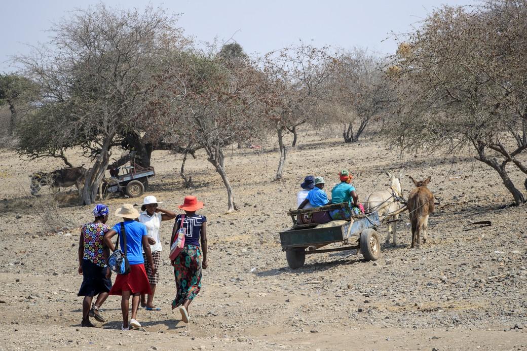 Donne al lavoro nell'aranceto di Shashe, Zimbabwe. Foto di Giovanni Diffidenti.