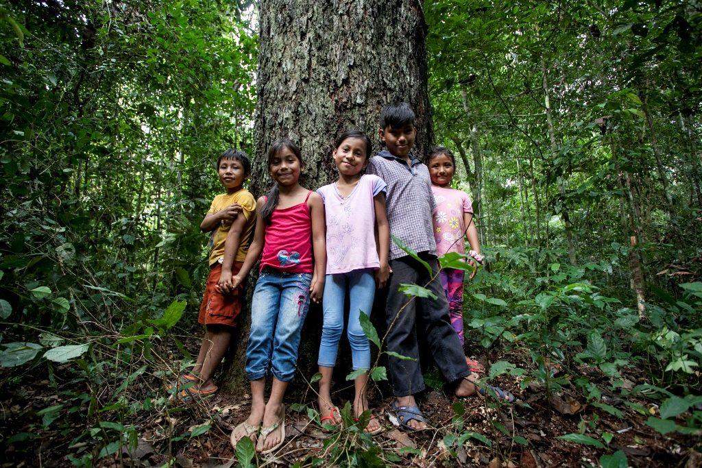 Bambini intorno all'albero della Noce Amazzonica