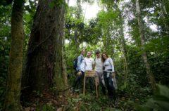 Cristina Parodi nella Foresta Amazzonica con Cesvi. Foto di Roger Lo Guarro